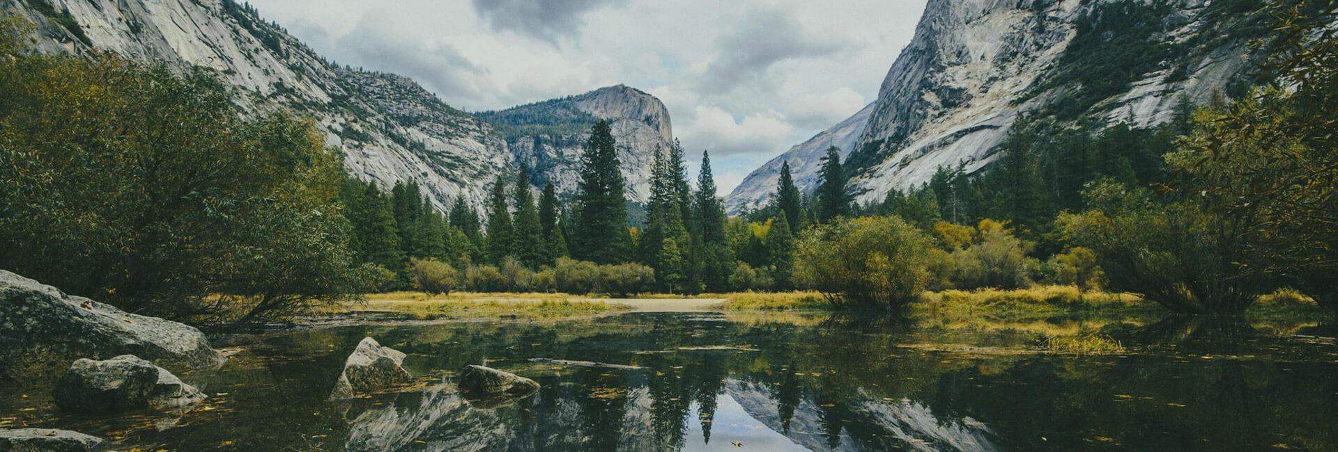 Ambiente, ecologia e impegno